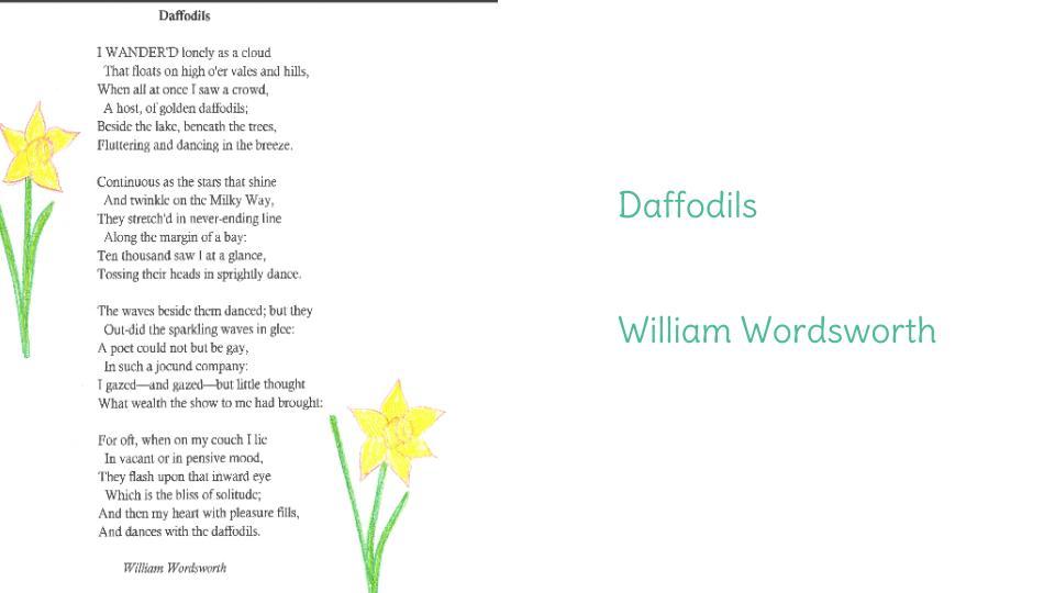 to daffodils analysis
