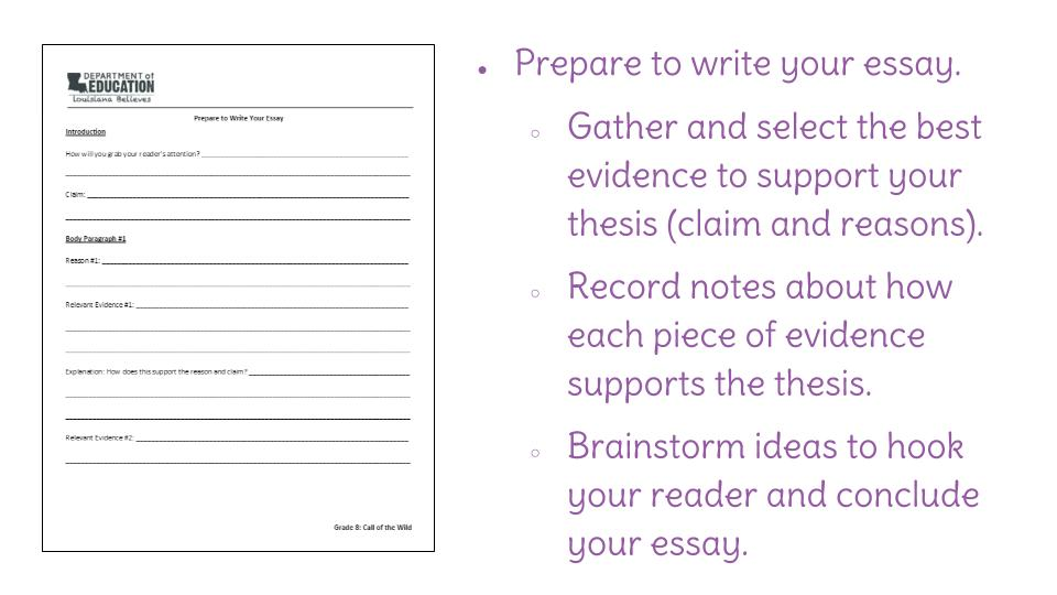 Believe destiny essays